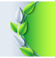 Eco background with fresh green and gray 3d leaf vector image
