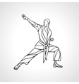 Martial arts pose silhouette Karate fighter vector image