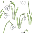 Seamless pattern with snowdrops vector image vector image