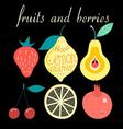Graphic set of various fruits and berries vector image