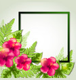summer frame with red flowers vector image