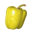 Yellow pepper on white background vector image