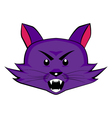 Angry purple cat head vector image
