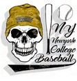 baseball logo skull fashion vector image