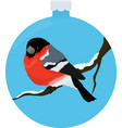 bullfinch bird illiustration in blue christmas vector image