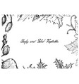 hand drawn of leafy and salad vegetable vector image