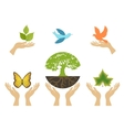 Nature Icons with hands set vector image