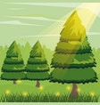 colorful background with pine trees and sunlight vector image