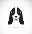 image of an basset hound head vector image