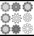 Floral decorative geometric design vector image