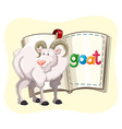 Goat with white fur and a book vector image