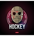 Sports logos for hockey vector image
