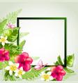 summer tropical frame vector image