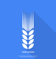 Ear of wheat flat design vector image
