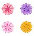 set of dahlia flowers vector image
