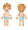 Boy body parts vector image vector image
