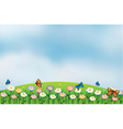 Butterflies in the garden at the top of the hills vector image