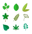 various green leaves set vector image