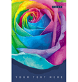 Raibow rose card 1 vector image