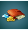 Purse with money credit cards and coins vector image