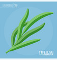 tarragon flat design icon vector image
