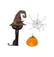 halloween objects - cat spider web pumpkin vector image