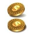 Dollars money coin vector image