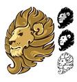 Lion Head Mascot Emblem vector image