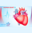 medical healthy template vector image