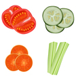 vegetables sliced vector image