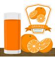 the orange vector image
