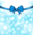 Christmas elegant packing with bow vector image