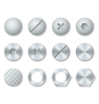 Steel screws nuts bolts rivets heads set vector image