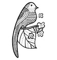 bird on branch with leaves and flowers coloring vector image