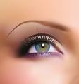 blue eye vector image