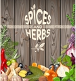 Spices and herbs vector image