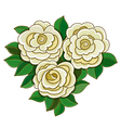 White roses with leaves isolated on white vector image