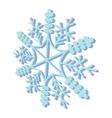 Snowflaked cartoon icon vector image