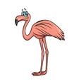 Cartoon flamingo bird character vector image