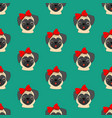 pug with bow seamless pattern vector image