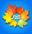 autumn background with leaves on background vector image