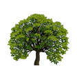 Big green tree symbol vector image