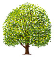 Tree Drawing vector image