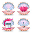 shells with face cream pink hearts wedding ring vector image