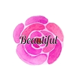 Watercolor flowers and beautiful set vector image