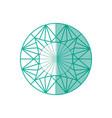 luxury diamond jewerly vector image