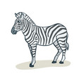 cartoon cute zebra vector image