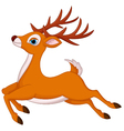 cartoon deer running vector image