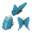 flying butterfly with blue wings color vector image