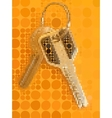 Two keys with metal ring on the orange background vector image